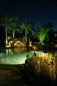 backyard pool with lit up palm trees