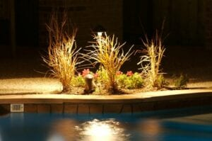 little flower bed next to a pool all lit up