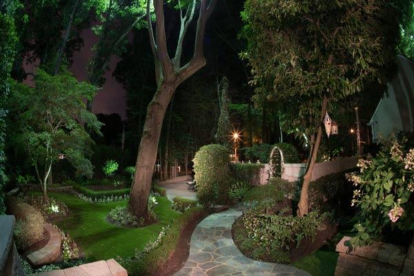 Moonlit outdoor lighting in a backyard