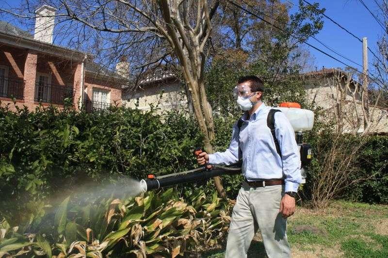zika mosquito control houston